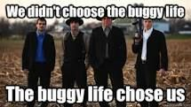 Amish mafia this show is so funny