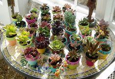 Painted Flower Pots Small Flower Pots por HappyMooseGardenArt