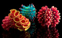 3D printed art, its really beautiful.