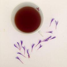 Chaque thé est un petit voyage #SérénitéDeLInstantThé #voyage #teaaddict #tealovers #teamtea #flower #flowerpower #soleil #thedesmuses