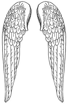 Large Angel Wings :: Angel Wings - Image to my tattoo and get the show on the road