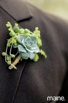 A perfect succulent accent with moss, string of beads and gold twine, photo by Heidi Lynne