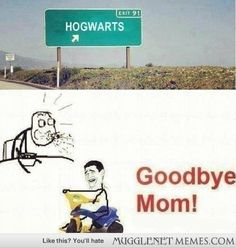 I'm not a hog warts person but there is actually a place called hog warts like whaaaa?