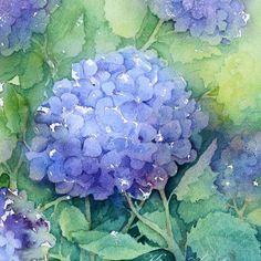 Doodlewash® ~ Hortensia - Original Watercolor