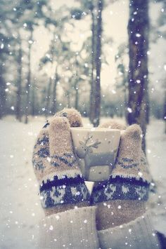 snowy winter, snowing in Alaska again, mittens,  reindeer mug, wintertime