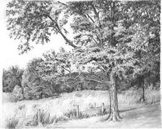 Graphite Pencil Drawings by Diane Wright Landscape Landscape Sketch, Landscape Drawings, Tree Sketches, Drawing Sketches, Sketching, Drawing Skills, Pencil Drawing Tutorials, Pencil Drawings, Graphite Drawings