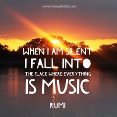 When I am silent I fall into the place where everything is music - #Rumi