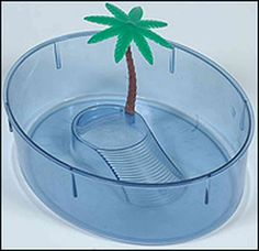 """Pet Turtle Aquarium. I'm sure the """"plastic"""" palm tree really made my turtle feel right at home."""