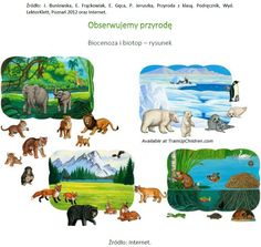 Animal Habitat HyperDoc by Amanda Young First Grade – Best Art images in 2019 Types Of Scientists, Animals And Pets, Funny Animals, Rainforest Habitat, Desert Animals, Animal Adaptations, Realistic Fiction, Kids Math Worksheets, Animal Habitats
