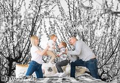 Czarno-biała fototapeta do sypialni drzewa . Wzór nr DEW9 CZB ©  #fototapety #fototapeta #drzewa #sypialnia #bedroom #kwiaty #szary #grey #copyright