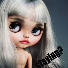 Staying?  #ElineFelix #darkrabbithole #darkrabbit #blythe #doll #dolls…