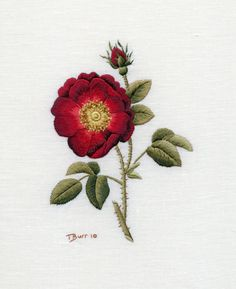Digital Download - French Rose