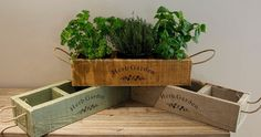 Handcrafted herb planter, wooden planter, herb crate, herb box, window box, window planter.  A beautiful modern vintage style herb planter with