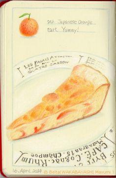 2014_04_16_tart_01_s 松江の焼き菓子屋さんの紅八朔のタルト。  a piece of Japanese orange tart.  for this drawing I used: Faber castell polychromos Moleskine sketchbook  © Belta(WAKABAYASHI Mayumi )