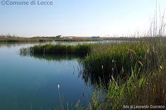 Lecce al Parco di Rauccio riprendono le attività domenicali