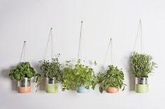 Faça você mesmo uma hortinha vertical em casa com latas e plante seus temperos favoritos