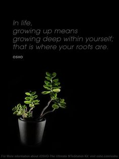 Growing up within yourself, OSHO
