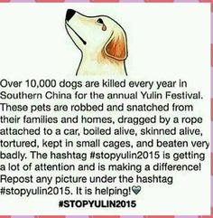 #stopyulin2015