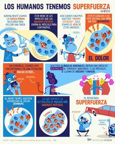 Superfuerza Spanish Posters, Curious Facts, Brain Tricks, Human Body Parts, Something Interesting, Interesting Facts, The More You Know, Funny Facts, Knowledge