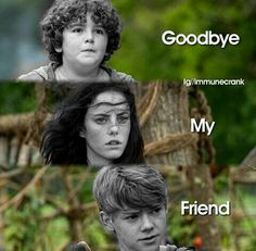 I am so sad why did all of Thomas's friends have to die? Well I guess he still has Minho?