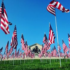 flag pole hill memorial day concert 2015