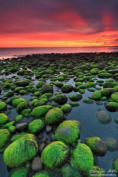 """Green Rocks - Hvaleyri in Hafnarfjörður, Iceland"" by orvaratli on flickr.com"