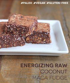 Energizing Raw Coconut Maca Fudge - In Sonnet's Kitchen grain free & vegan Superfood Recipes, Raw Food Recipes, Smoothie Recipes, Sweet Recipes, Simple Recipes, Smoothies, Raw Desserts, Just Desserts, Fudge Recipes