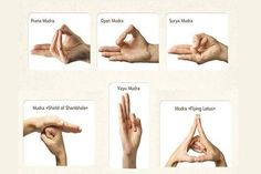 Yoga is very popular all around the world. It makes people feel better and happier. Western medical science recommends regular yoga practice because it can increase the activity of the parasympathetic nervous system. Getting Rid Of Migraines, Prevent Migraines, Gyan Mudra, Hand Mudras, Yoga Master, Kundalini Yoga, Social Anxiety, Nervous System, Hiit
