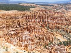 The Hoodoo's of Bryce Canyon, Utah. I love this place, it's so amazing. You have to do a hike down to the canyon floor to see them up close.
