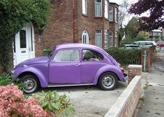 """PURPLE - VW BEETLE by CARLOS62, via Flickr"" -  I am sure I don't have a purple VW on this board. S"
