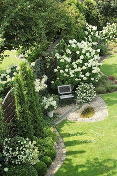 Latam z aparatem ;) A Sierpówka lata nad ogrodem ;) Gorące pozdrowienia z chłodną limonką przesyła Anna i Sierpówka...