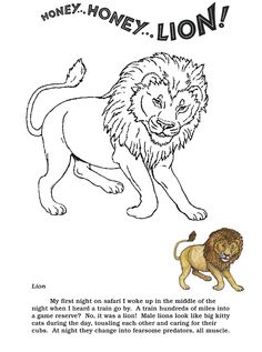 Coloring Pages The Lion