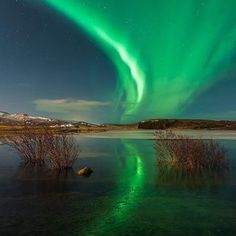 We are well and truly in the midst of aurora season here in Iceland! 🤩-Have you ever wanted to see the Northern Lights for yourself? There's a recipe that you'll need to follow. First of all, you need to be somewhere up near the Arctic Circle. Needless to say, Iceland is the perfect place for it! Next, you'll need dark skies, solar activity and relatively clear conditions to be able to view it. If all of these elements come together for you, then you'll be in for a treat! 📸-Would you like Solar Activity, See The Northern Lights, Arctic Circle, Dark Skies, Have You Ever, Aurora Borealis, Perfect Place, Iceland, Wellness