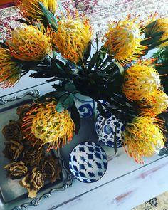 Heidi Shedlock (@heidishedlock) • Instagram photos and videos Flower Bird, Leaf Flowers, White Flowers, Protea Bouquet, Flower Bouquets, Sage Green Wedding, Flower Packaging, White Wedding Bouquets, Orange Blossom