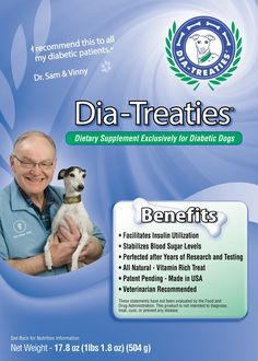 Dia-Treaties: Dog Owner Invents A Treat That Solves Insulin Swings In Diabetic Dogs. Diabetic Tips, Diabetic Dog, Homemade Dog Treats, Pet Treats, All Natural Vitamins, Poor Dog, Pet News, Diabetes Treatment, Diabetes Management