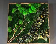 Tree Moss Wall Garden