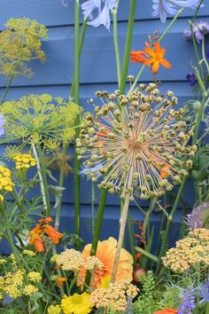The 'Ekphrastic Flowers' installation at Tatton Park Flower show by Flowers from the Farm