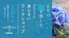こんにちは。haletto編集部浅田です。 6月、梅雨です。梅雨の季節は憂鬱になりがちですが、梅雨だからこそ出かけたい場所もあります。そのひとつが、青や紫の紫陽花が美しい鎌倉です。 街のあちこちで紫陽花が満開になり、しっとりした情緒を楽しむ6月の鎌倉。今回、そんな鎌倉の紫陽花を家でも楽しめるワークショップをAoyama Flower Marketと共催で企画しました。 ■お申込みページはこちら --------------------------------------------------------------------------- 6月の雨を楽しむ。halettoのあじさいワークショップ@鎌倉古民家「燕CAFE」 (共通) ・古民家の縁側を眺めながら「あじさい」のフラワーアレンジメント講座 ・燕CAFE特製メニューを食べながら「鎌倉のおでかけ」に関する座談会 (特製メニューについて) (1)オーガニック食材も使ったランチセット(午前の部) (2)特製アフタヌーンティーセット(午後の部) ※(共通)+(1)か(共通)+(2)にご参加できます。…