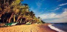 Experience some of the #best #beaches in the world, scanning from #Bentota, #Galle, #Unawatuna, #Hikkaduwa, #Trincomalee, #Arugumbay & #Passikudah. These tours offer complete paradise! #srilanka #holidaysinlanka #lka bookings@inspirevoyage.com