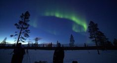 Aurora Borealis in Lapland ❄️ We are going to this amazing place in January to hunt Aurora Borealis (darkness time) and in February for an adventurous multiple day husky safari, have a look on our website  http://www.thetravelcapsule.com/aurora-borealis/  #lapland #finland #aurora #auroraborealis #magical #adventure #winter #snow #sun #huskies #snowmobile #snowshoes #wild #energetic #astrological #sauna #massages #activities #free #spirit #nature #naturelovers #travel #travelers #backpackers…
