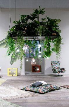 Ideas To Display Your Indoor Plants