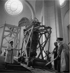 Le retour de la Victoire de Samothrace @MuseeLouvre en 1945 (photo Pierre Jahan 1909-2003)