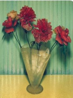 Mexican Flowers, polaroid by Albert Watson, New York 1996. Mexican Flowers, Things Under A Microscope, Royal College Of Art, Bunch Of Flowers, London Art, Colorful Pictures, Coloring Books, Colouring, Art Photography