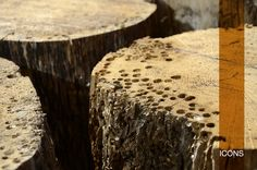 11 fantastiche immagini su Materials Materiali | Legno
