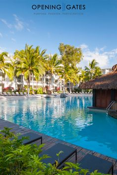 After our LIFE by DESIGN Retreat at Peppers Beach Club and Spa, Palm Cove Queensland Australia, our designers love to indulge in the swim up bar! Swim Up Bar, Transform Your Life, Queensland Australia, Beach Club, Gate, Spa, Designers, Swimming, Outdoor Decor