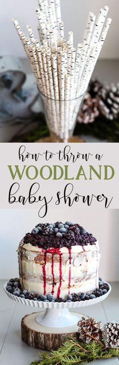 diy woodland themed baby shower howto woodsy food and party decoration ideas and