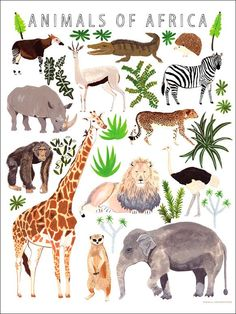 Go on safari with new animal wall art at Oopsy Daisy! This canvas wall art for kids is full of creatures from Africa like giraffes rhinos lions and elephants. Put it up as nursery art or even in a big kid's room! African Animals, African Art, Safari Animals, Cute Animals, Gato Animal, Animal Posters, Animal Prints, Art Prints, Nursery Art