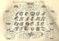 Decorative Alphabet | Adam Schwarcz | Flickr Letters And Numbers, Monogram Letters, Beautiful Fonts, Calligraphy Letters, Illuminated Letters, Typography Design, Drawings, Monograms, Decorative Lettering