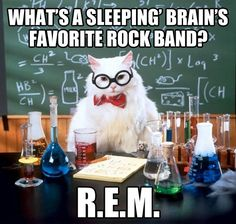 Sleeping brain…