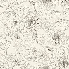 Seamless Floral Pattern with Chrysanthemums - Flowers & Plants Nature